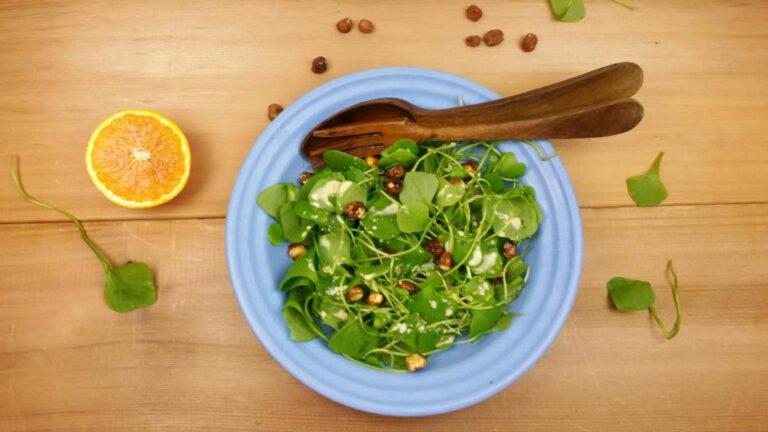 Thumbnail voor het recept: Winterposteleinsalade met hazelnoten