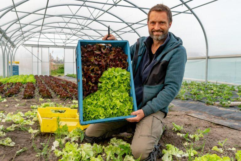 Thumbnail voor het recept: Hoera, de eerste oogst!