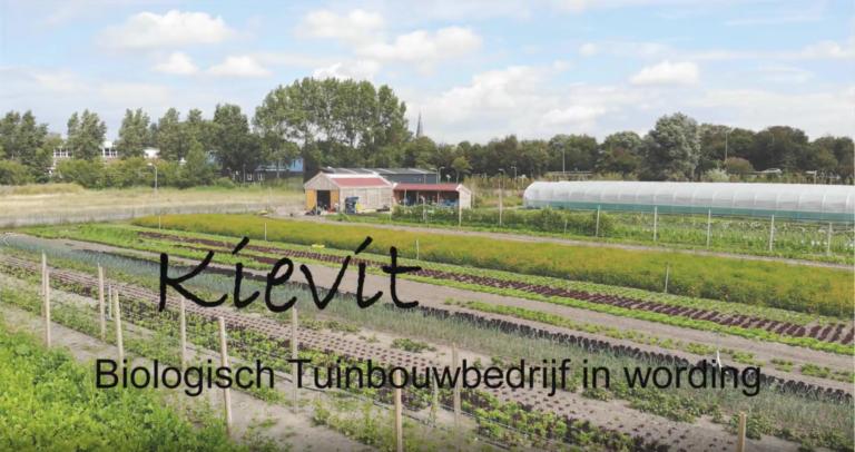 Thumbnail voor het recept: FILMPJE: Kievit, Biologisch Tuinbouwbedrijf in wording